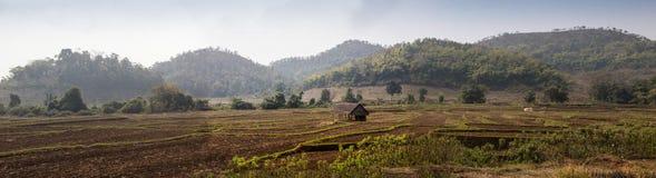 Indiern utbildade bonden i hans fält för sockerrottingen, den lantliga byn Salunkwadi, Ambajogai, Beed, maharashtraen, Indien, sö Arkivbild