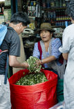 Indigenous Bolivian woman selling coca leaf at the market Stock Photography