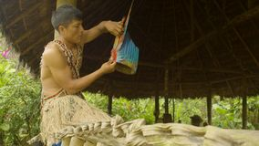 Tribe Man Making Feather Headgear. Indigenous Cooking, Handicrafts And Art On Amazonian Village In Ecuador stock footage