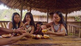 Indigenous family sharing cocoa fruit seeds for dessert. In Ecuador stock video footage