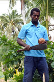 Indigenous Fijian man is about to open a coconut palm fruit in F Stock Image