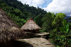 Indigenous houses. At The Lost City in Colombia Stock Photo