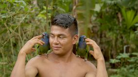 Indigenous man playing with parrots in the jungle. Indigenous man playing with two parrots on his shoulders in amazonian jungle in Ecuador stock video