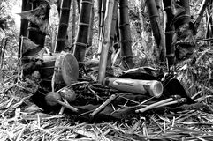 Indigenous musical instruments in black and white Royalty Free Stock Photo