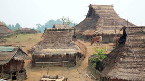 Indigenous native tribal culture of Akha tribe village,Pongsali,Laos. Day time stock video