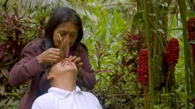 Indigenous old woman applying natural medicine in her daughter's eyes. In the amazon rainforest stock video footage
