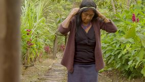 Indigenous old woman carrying a basket of exotic fruits. On her back stock footage