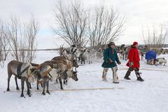 The indigenous people of Northern Siberia the Nenets winter day. NADYM, RUSSIA - MARCH 04, 2018: Nenets man during the traditional holiday of the reindeer Stock Photography