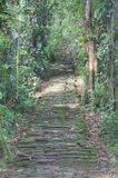 Indigenous stone stairs in Ciudad Perdida archeological site Royalty Free Stock Photography