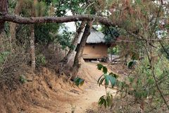 Indigenous traditional tribal house in nagaland, India. Rural, naga people tribe Royalty Free Stock Images