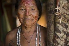 Free Indigenous Woman From Brazilian Amazon Royalty Free Stock Photos - 174824118
