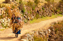 Indigenous Woman on Path in Bolivia Stock Images