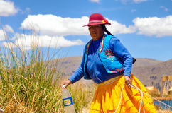 Indigenous Woman in Peru Royalty Free Stock Photo