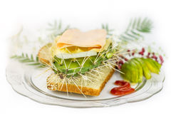 Indigestion. Cactus sandwich with jam avocado and berrys Royalty Free Stock Photo