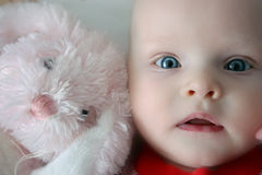 Indigo baby with pink bunny. Blue-eyed baby with toy pink bunny Royalty Free Stock Photography