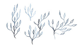 Indigo blue hand drawn branches Royalty Free Stock Photography