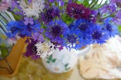Indigo cornflowers bouquet royalty free stock photography