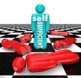 Indipendente autosufficiente Person Wins Game On Own Fotografie Stock Libere da Diritti