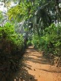Indisch dorp in wildernis Stock Afbeelding