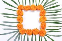 Indisch Festival Diwali, Diwali-lamp en bloemrangoli royalty-vrije stock foto's