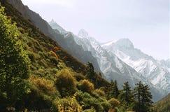 Indisch Himalayagebergte Royalty-vrije Stock Afbeeldingen