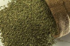 Indisch kruid-anijszaad stock afbeelding
