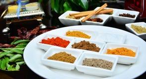 Indisch und Gewürze kochend lizenzfreie stockfotografie