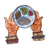 Indisch voedsel handen en kruiden Geïsoleerde watercolor Stock Fotografie