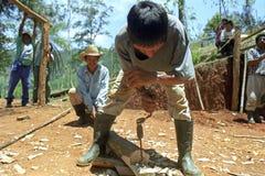 Indische Bauarbeiter, die in den Hochländern arbeiten Stockbild