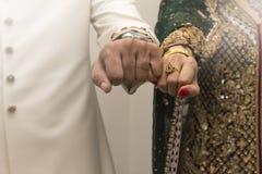 Indische Bruid en Bruidegom stock afbeeldingen