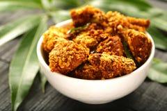 Indische cuisine- gebraden kip stock afbeelding
