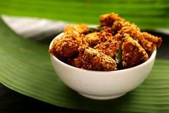 Indische cuisine- Heerlijke gebraden kip royalty-vrije stock foto