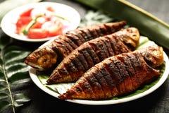 Indische cuisine- heerlijke geroosterde vissen stock fotografie