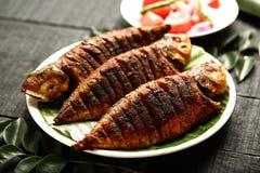 Indische cuisine- heerlijke kruidige geroosterde vissen royalty-vrije stock fotografie