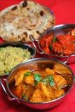Indische Curry-Nahrungsmittelmahlzeit Stockfotos