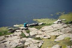 Indische dame die haar wasserij naast een rivier doen Stock Fotografie