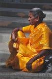 Indische dame in gouden Sari stock fotografie