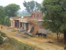 Indische Dorpsscène Stock Afbeeldingen