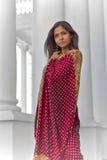 Indische Eleganz Stockfoto