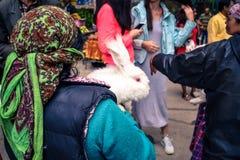 Indische Frau, die Angorakaninchen verkauft Lizenzfreie Stockfotografie