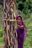 Indische Frau, die Holz sammelt stockbilder