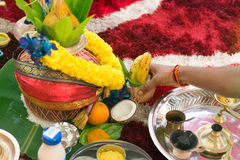 Indische Gebetserbsüdeinzelteile Stockfoto