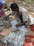 Indische getrocknete Fische des Dorfbewohners Verkäufe Stockbilder