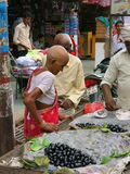 Indische kahle Frau Lizenzfreie Stockfotografie