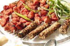Indische kebab en kippenaanzet Stock Foto's