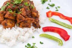 Indische keuken - Lamsvlees Royalty-vrije Stock Foto