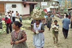Indische Kinder, die an Markt in Almolonga arbeiten Lizenzfreies Stockbild