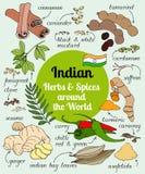 Indische Kräuter und Gewürze Stockbild