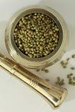 Indische kruid-koriander zaden royalty-vrije stock foto