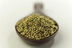 Indische kruid-koriander zaden stock foto's